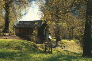 Festival della Castagna in Val Bregagna - BRENTAN