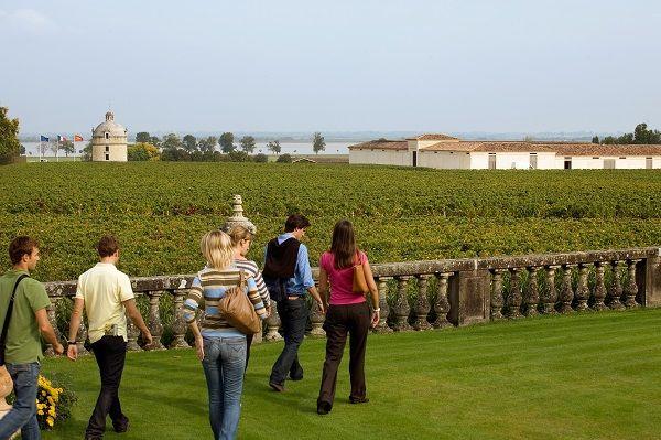 Tour vigneti a Bordeaux_ Visita al Chateau