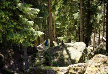 Weekend e festività tra natura e cultura a Zurigo