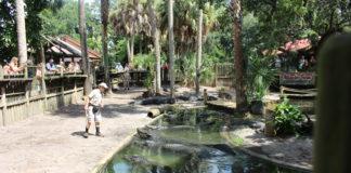 Alligator_Farm_3_St.Augustine