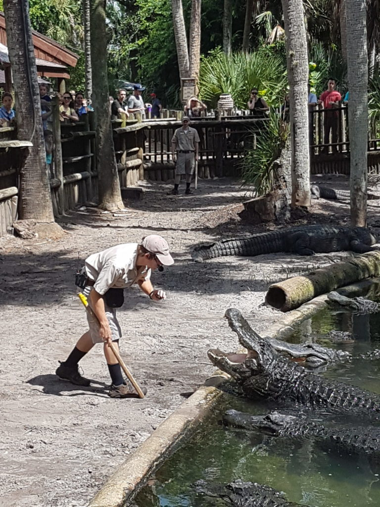 Alligator Farm, St. Augustine - Photo by Voicesearch.travel