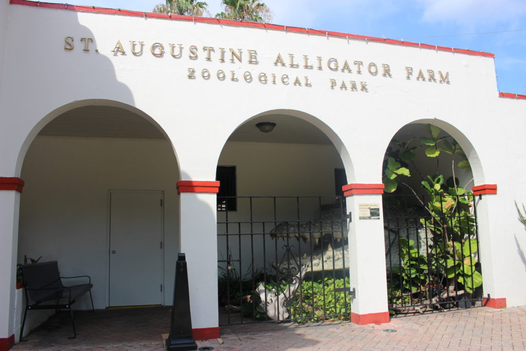 Alligator Farm, St. Augustine, Florida - Photo by Voicesearch.travel