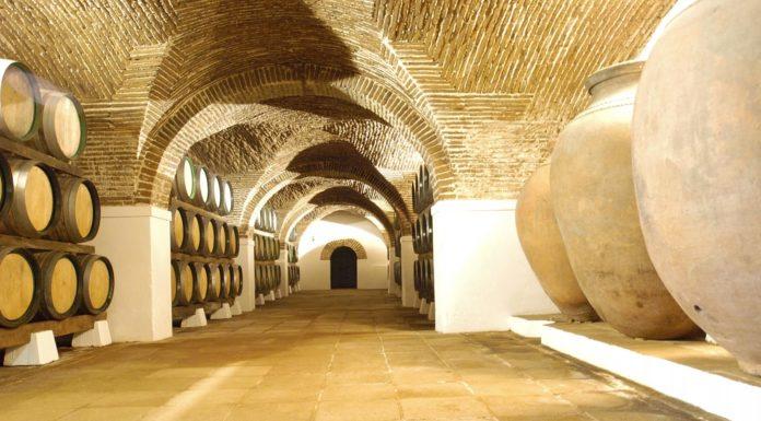 Strada dei vini Alentejo