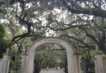Wormsloe - Savannah