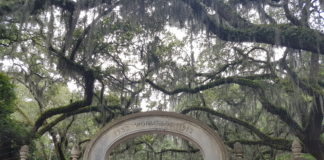 Wormsloe - Savannah