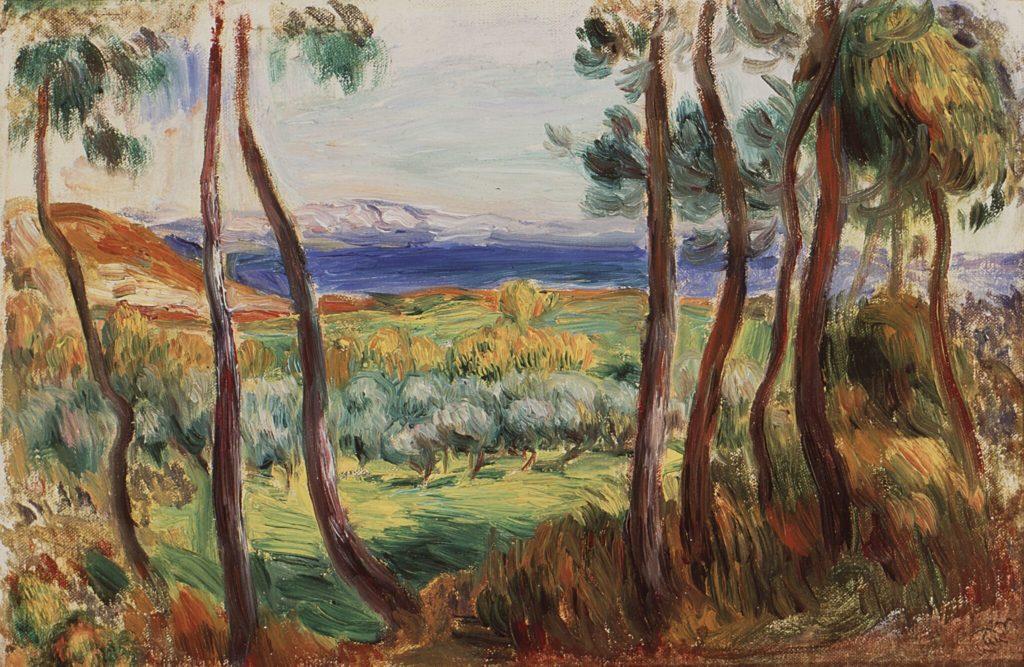 Pins aux environs de Cagnes - Renoir