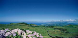 aisagem-com-hortenses_Monte-da-Achada-Angra-do-Heroísmo-Ilha-Terceira_Credit-Joao-Paulo-