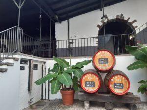 Wine tour_ Cantina Blendy's a Madeira