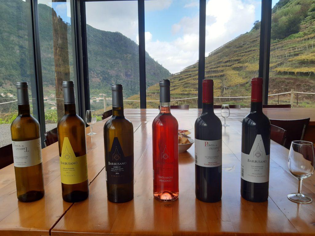 Madeira wine tour_ Cantina Barbusano