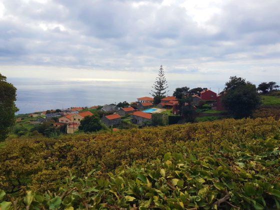 Quinta das Vinhas - Madeira