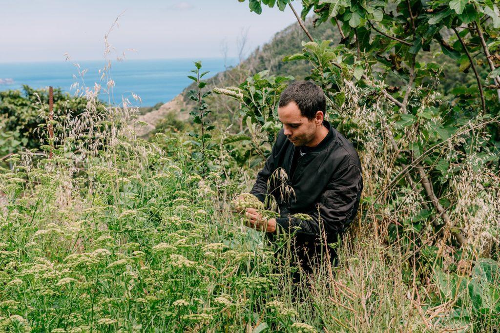 Alla ricerca delle erbe perfette per i propri piatti. Selim a Madeira