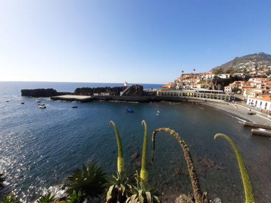 Madeira_Camara De Lobos