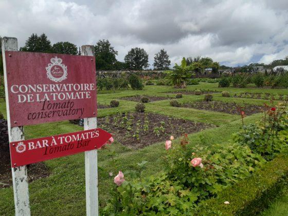 Chateau de la Bourdaisière_ Entrata dell'orto dove si coltivano 700 tipi di pomodori non ibridati
