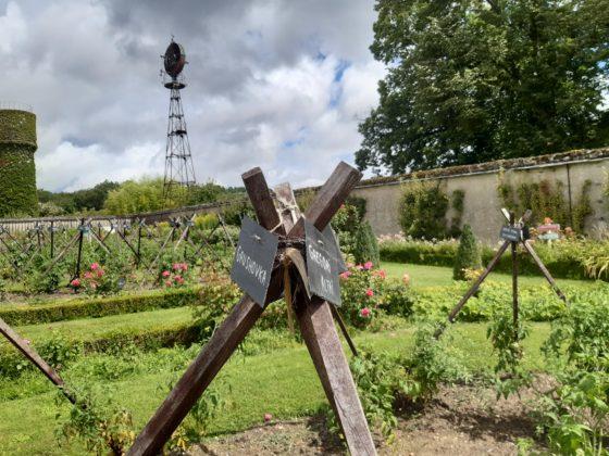 Chateau de la Bourdaisière_ Ogni struttura di tutori in legno ospita una pianta di pomodoro diversa